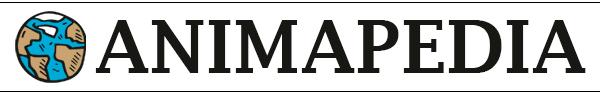 Logo Animapedia