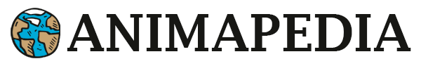 Logo Animapedia