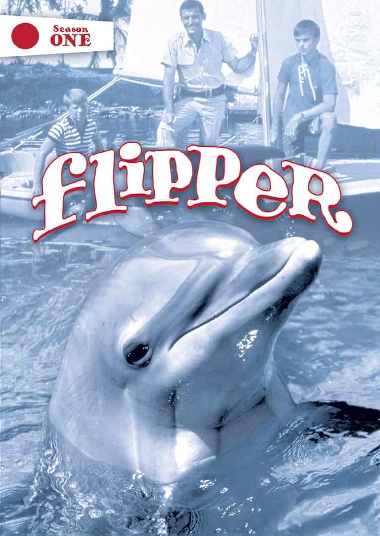Flipper, de 1964 fue una famosa serie sobre un delfín y dos niños